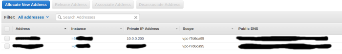 Elastic IP Configuration